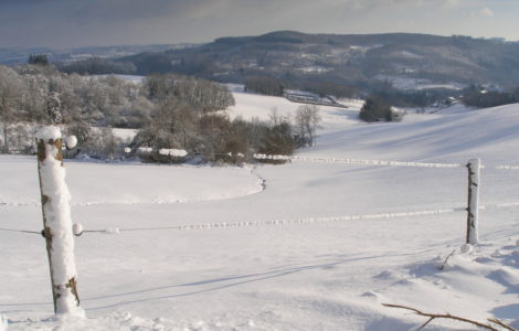Cheissoux, the nature under the snow
